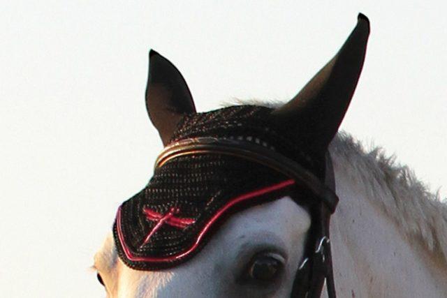 cuffia insonorizzata per cavalli, horse bonnet soundless, freejump