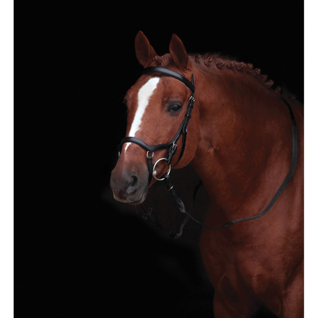 rambo-micklem-competition-bridle