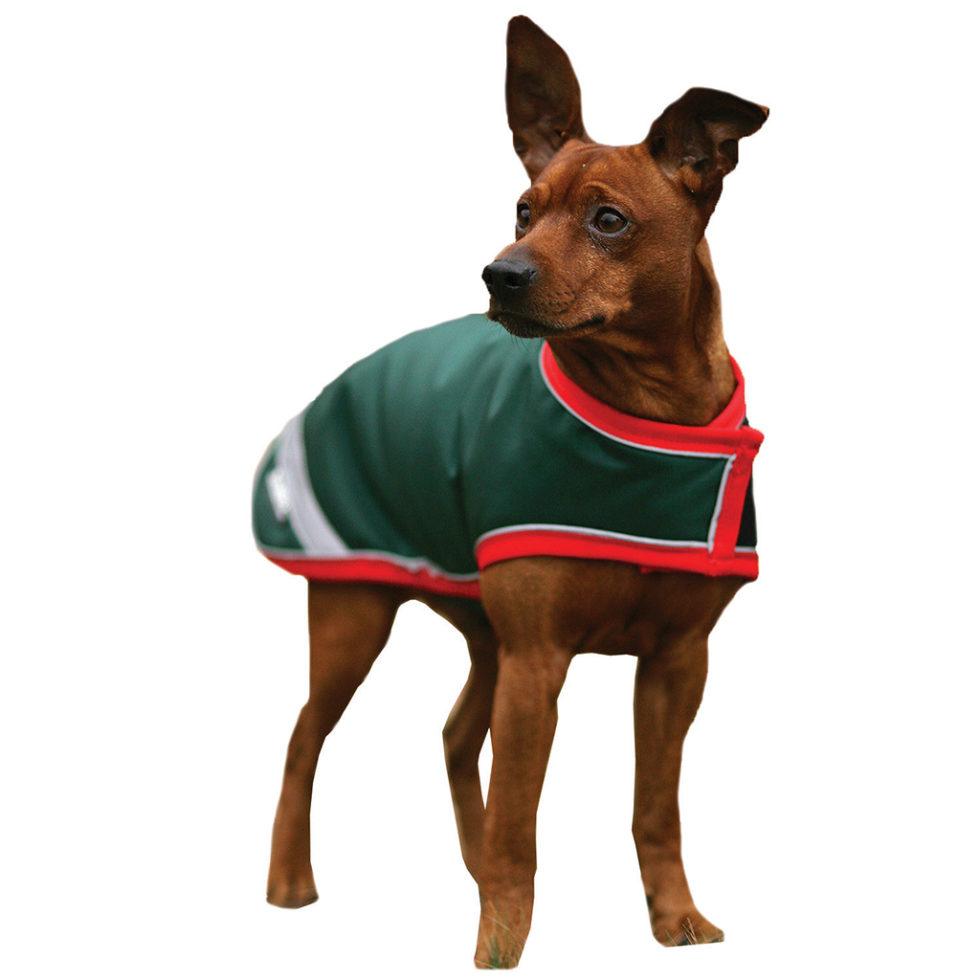rambo-waterproof-dog-rug
